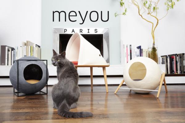 Meyou, ou quand les chats investissent le mobilier des humains